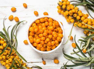 Rakytník – vitamínová bomba pro vaše zdraví